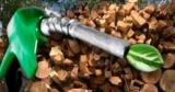 В Одесской области сахарозавод переоборудуют под производство биотоплива