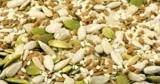 Французский производитель семян Euralis намерен увеличить долю в Украине в два раза